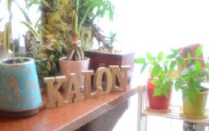Kalon hair resort 自由が丘 都立大学 田園調布(縮毛矯正専門店)
